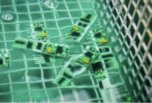 wafer di silicio